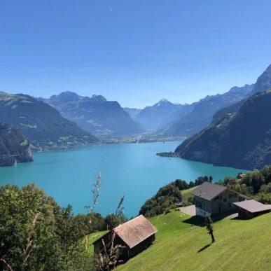 Aussicht Auf Den Luzerner See